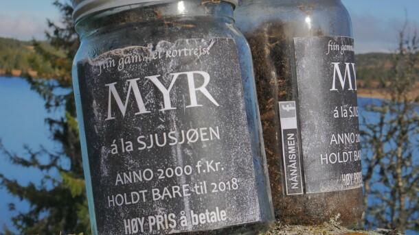 Myrsaken myrglass