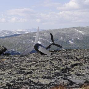 """ForankraFri"" av Egil Martin Kurdøl"
